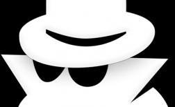 قابلیت مرور محرمانه در مرورگرهای اینترنتی