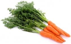 روش کاشت هویج در خانه