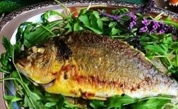 طرز تهیه ماهی شوریده