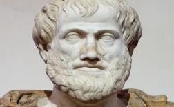 زندگی نامه ارسطو