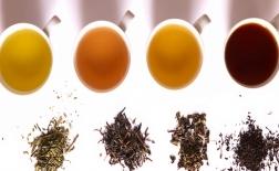 معرفی کامل چای سفید و آشنایی با انواع دیگر چای