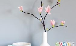 شکوفههای کاغذی ماگنولیا