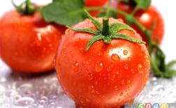فواید گوجهفرنگی برای سلامت و زیبایی