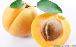 خواص میوه زردآلو