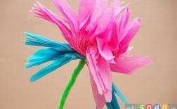 روش درست کردن گلهای کاغذی مکزیکی