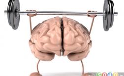 چگونه مغز خود را آموزش دهید