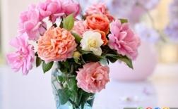10 گل زیبا با معانی شگفت انگیز