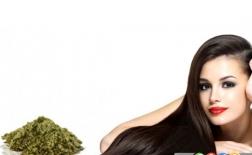 فواید استفاده از حنا روی موها