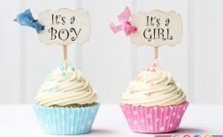 چه زمانی جنسیت کودک مشخص می شود؟