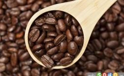 خواص تاثیرگذار قهوه