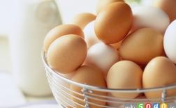 دانستنی های جالب از تخم مرغ