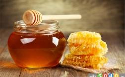 دانستنی های جالب از عسل
