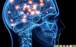 راه هایی برای کارایی بهتر مغز