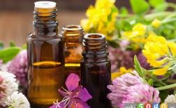 روغن های گیاهی قوی برای عفونت های مخمری 2