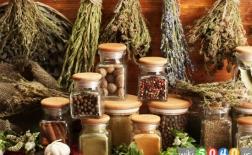 بهترین گیاهان برای کاهش درد