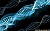 اختلالات ژنتیکی و نقصهای مادرزادی