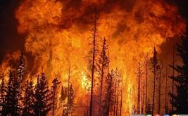 بایدها و نبایدها هنگام حوادث طبیعی