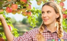 میوه هایی که باید در پاییز بخورید