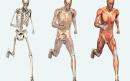 دانستنی های مفید در مورد بدن