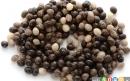فواید غذایی دانه های پاپایا