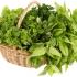 روش های نگهداری سبزیجات به مدت طولانی
