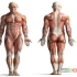 روشهای کاربردی بهبود حالت بدن