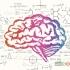 7 باور نادرست درباره ی مغز