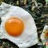 نرگسی لوبیا سبز