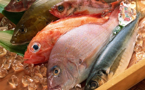 دانستنی های ماهی