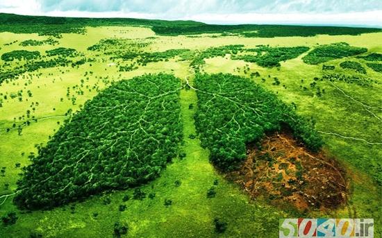 ده روش حفاظت از محیطزیست