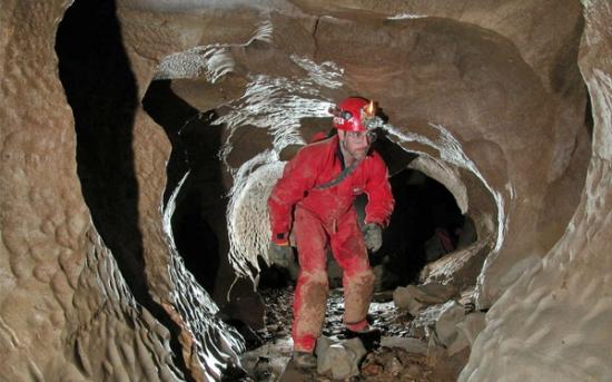 غارنوردی