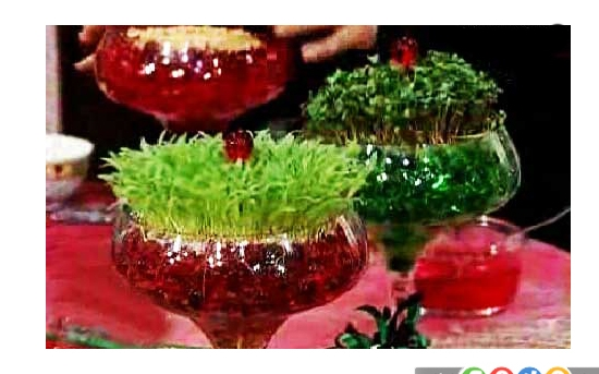 کاشت سبزه در خاک ژله ای