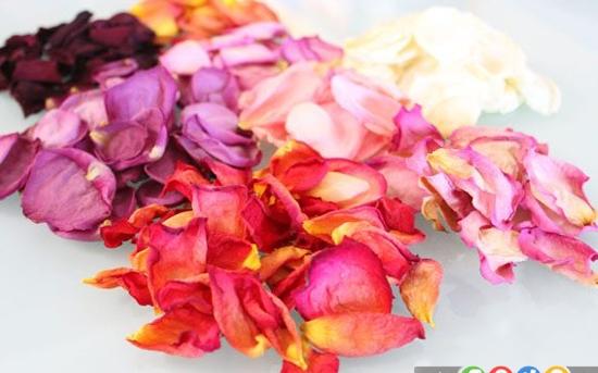 خشک کردن گلبرگ های رز