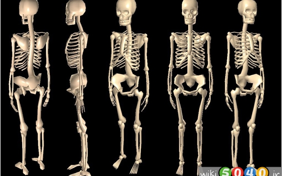 سرطان استخوان، علائم و درمان